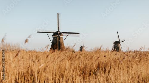 Moulins à vent en Hollande