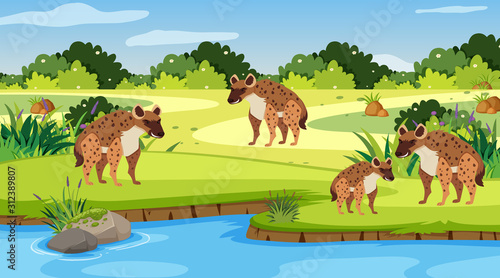 Background scene with hyenas by the river Wallpaper Mural