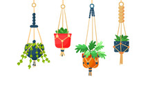 Collection Of Hanging Macrame Plants In Pots For Interior. Flat Cartoon Vector Illustration On White Background