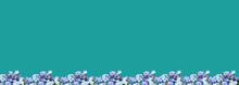 Arrière-plan ,fleurs De Myoso...