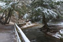 Walking Path Along A Creek In Early Winter