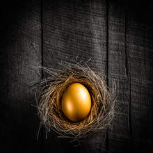 Golden Nest Egg On Rustic Wooden Table Background - Investment Concept