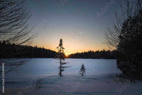 A Cold Winter Sunrise In Algonquin Provincial Park, Canada Canvas Print