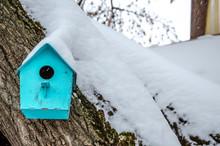 Birdhouse For Birds On A Tree ...