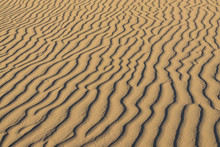 Ripples In The Sand At The Glamis Recreational Area In Imperial County, California.