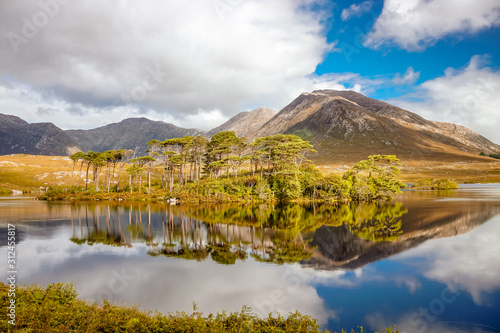 Fototapeta Derryclare Lough and the reflection of the twelve pines obraz na płótnie