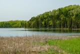 Lake Itasca in summer