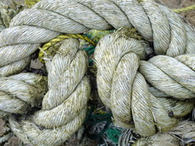 Macro Image Of A Gray Rope Knotted With Green Algae