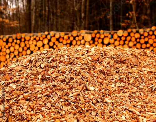 hackschnitzel bäume und stämme Billede på lærred