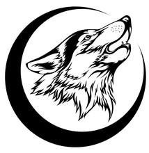 Image Of A Wolf Howling At The...