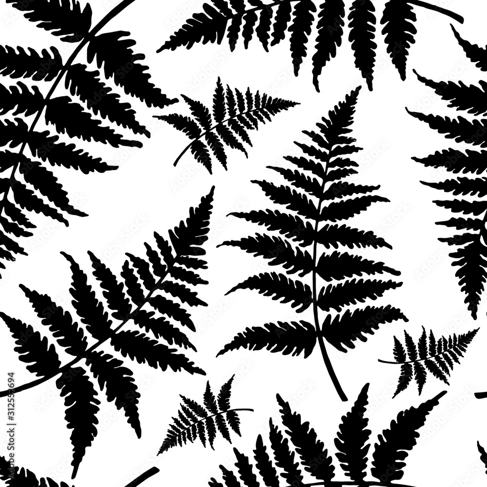 Fototapeta seamless pattern in monochrome colors with fern leaves