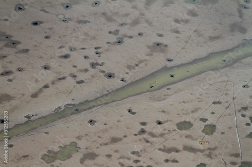 Photo Aerial photograph of dry fishponds with old tree stumps, Crna Mlaka