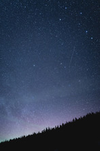 Stars Above The Pines