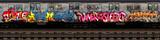 Fototapeta Młodzieżowe - Graffiti Subway Car 1