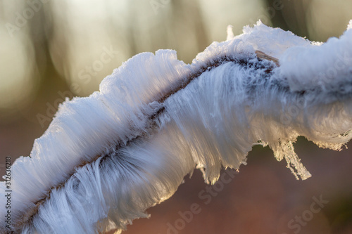 Chevelure de glace Tapéta, Fotótapéta