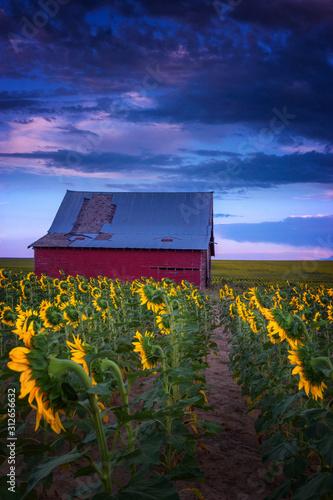 Colorado Country