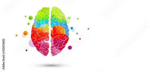Fényképezés cervello, fantasia, colori
