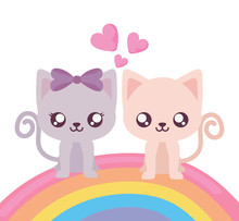 Isolated Couple Of Cats And Rainbow Vector Design