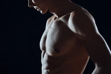 Muscular Male Torso Of A Man