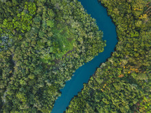 Jungle Forest Aerial Landscape...
