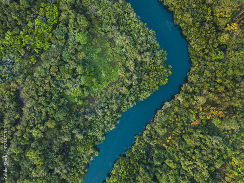 Canvas Print jungle forest aerial landscape, winding river view from above, nature and wilder