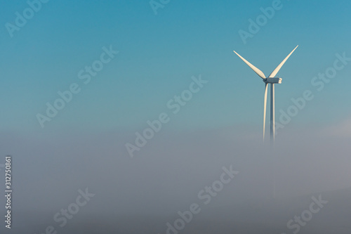 Aerogeneradores o molinos de viento sobre la niebla de la mañana Canvas Print