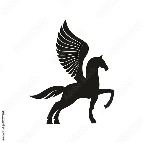 Cuadros en Lienzo Winged horse silhouette isolated pegasus silhouette