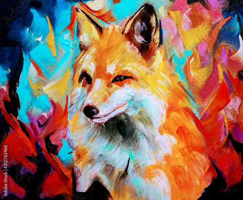 Fototapeta Wild fox illustration in oils isolated on colorful background obraz