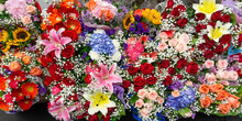 Many Fresh Flowers With Drople...