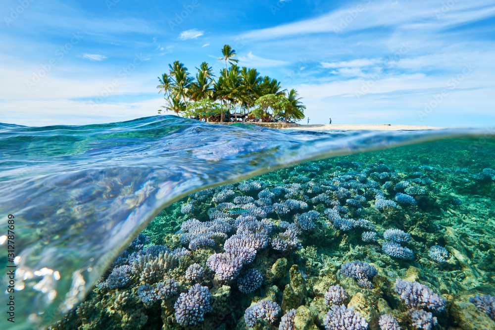 Fototapeta House reef and uninhabited island_1