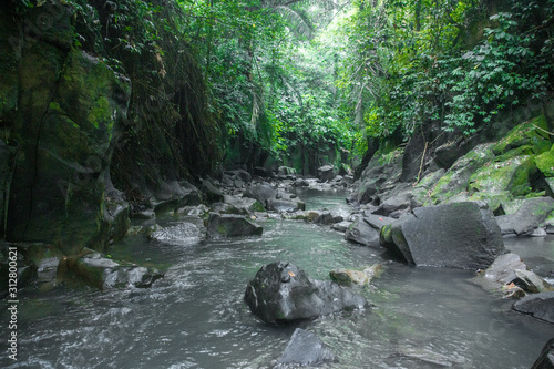 Secret River Stream In The Rich Green Kanto Lampo Forest With Rocks And Hanging Trees, Like A Canvas Print