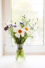Bouquet Of Chamomiles And Cornflowers In   Vase On   Table.