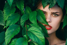 Beautiful Woman Green Leaves L...