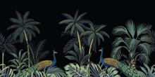 Tropical Night Vintage Peacock, Palm Tree And Plant Floral Seamless Border Black Background. Exotic Jungle Wallpaper.