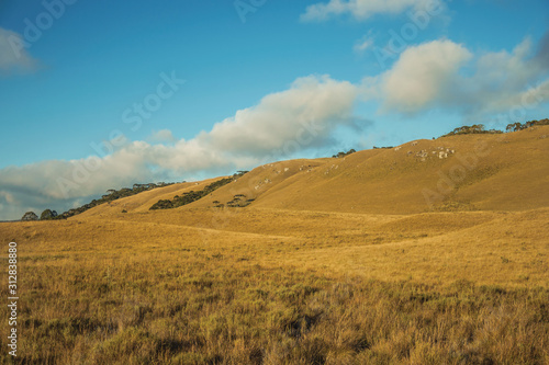 Obraz na płótnie Landscape of rural lowlands called Pampas