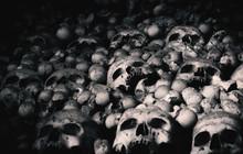 Human Skulls And Bones. Gloomy...