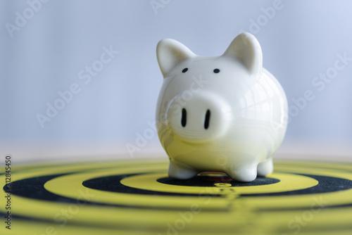 Cuadros en Lienzo  piggy bank on dartboard concept of saving money with a goal