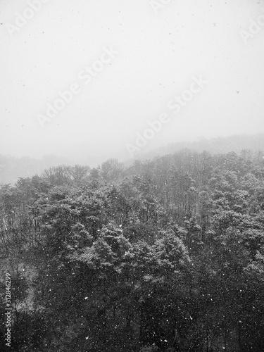Fotografía  한국의 눈내린 겨울산 풍경