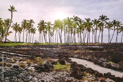 Barren lava fields of Pu'uhonua, or the City of Refuge, where Hawaiians could go to seek absolution for breaking ancient laws Canvas Print