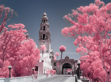 Balboa Park In Pink
