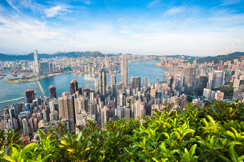 Hong Kong cityscape seen from Lugard Road on Victoria Peak Wallpaper Mural