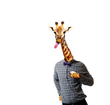 Giraffe In Shirt Of A Man With...
