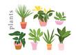 background, botanical, cactus, cartoon, collection, color, decoration, decorative, design, doodle, doodles, drawing, element, ficus, flat, floral, flower, flowerpot, garden, gardening, graphic, green,