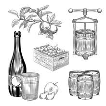 Set Of Apple Cider. Harvest Apple, Wooden Crate, Press, Barrel, Glass And Cider Bottle.