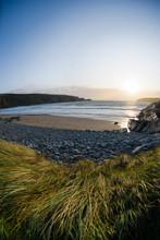 Grass And Stones On Irish Beach
