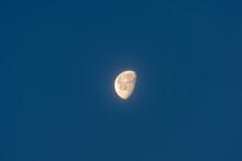 Abnehmender Mond Im Dunkelblauen, Wolkenlosen Morgenhimmel Mit Platz Für Text