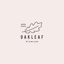 Oak Leaf Logo Hipster Vintage Retro Vector Icon Illustration