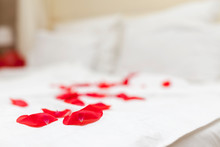 Rose Petals On The Bed. Romanc...