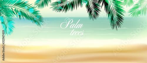 Tło z liści palmowych. różne środki przekazu. Ilustracji wektorowych