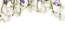 Spring Decoration. Flowers Whi...